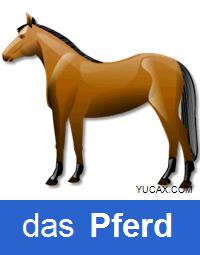 caballo en alemán