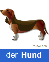 perro en alemán